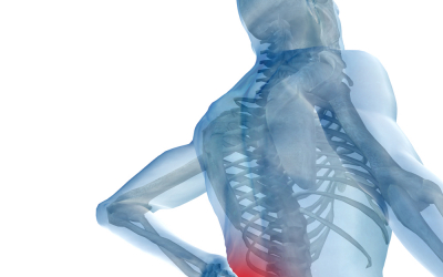 A Gentle Somatic Exercise to Relieve Lower Back Pain (or prevent it occurring)